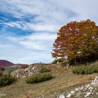 03 Monte Padiglione