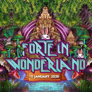 forte in wonderland 2020