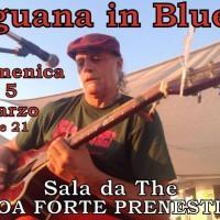 iguana blues